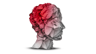 HPLC as a Diagnostic Tool for Concussion