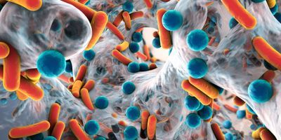 New Immunotherapeutic Strategy Shows Promise in Eradicating Infectious Biofilms