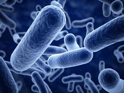 The Need for Faster UTI Pathogen Detection