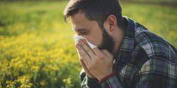 Nasal Biomarkers Predict Severity of Pollen Allergy Symptoms