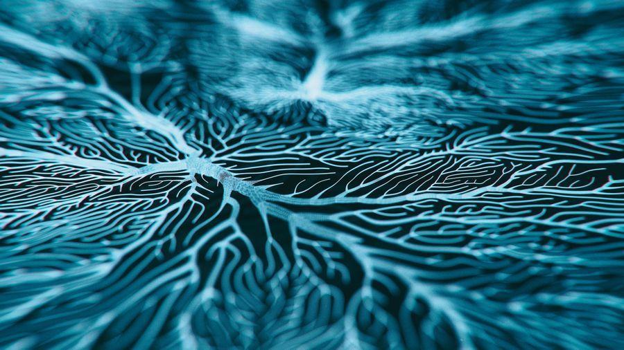 Antibody Designed to Recognize Pathogens of Alzheimer's Disease