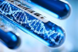 The Need for Standardization in Liquid Biopsy Sample Prep