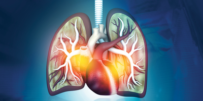 Human Lungs Rejected for Transplant Recovered Using New Technique