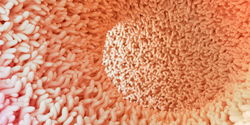 Gut Microbes Shape Our Antibodies before We're Infected by Pathogens