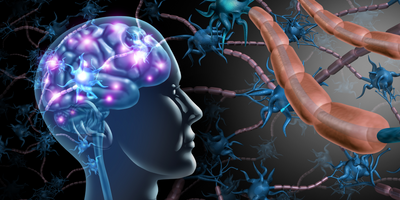 Drug Prevents Multiple Sclerosis Relapses in Phase III Trial