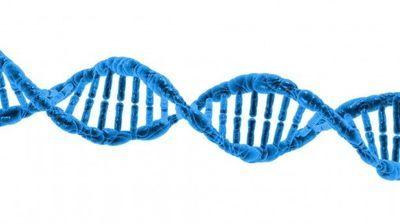 CRISPR-Cas3 Innovation Holds Promise for Disease Cures