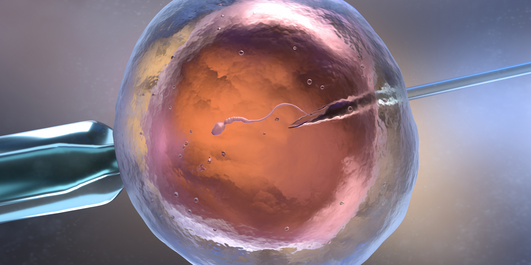 AI System Developed to Help Better Select Embryos for Implantation