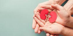 Biomarker Combination Predicts Kidney Injury in Critically Ill Children