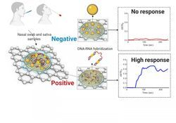 New Electrochemical Sensor Can Detect COVID-19 in Less Than Five Minutes