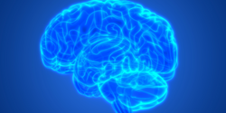New Biomarker Candidate for Amyotrophic Lateral Sclerosis