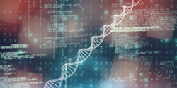 Researchers Identify Genomic Indicators That Predict Prostate Cancer Outcomes