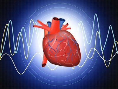 Novel Biomarkers Predict the Development of Incident Heart Failure