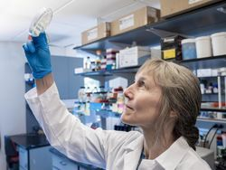 With COVID-19 Exacerbating Superbug Threat, Researchers ID New Weapon