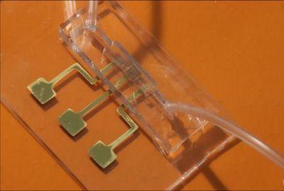 Detecting COVID-19 Antibodies in 10–12 Seconds