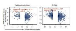 New Study Points to Better Biomarkers for Cancer