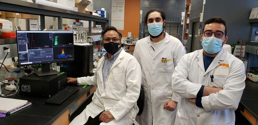 New Early Plasma Biomarkers for Alzheimer's Disease