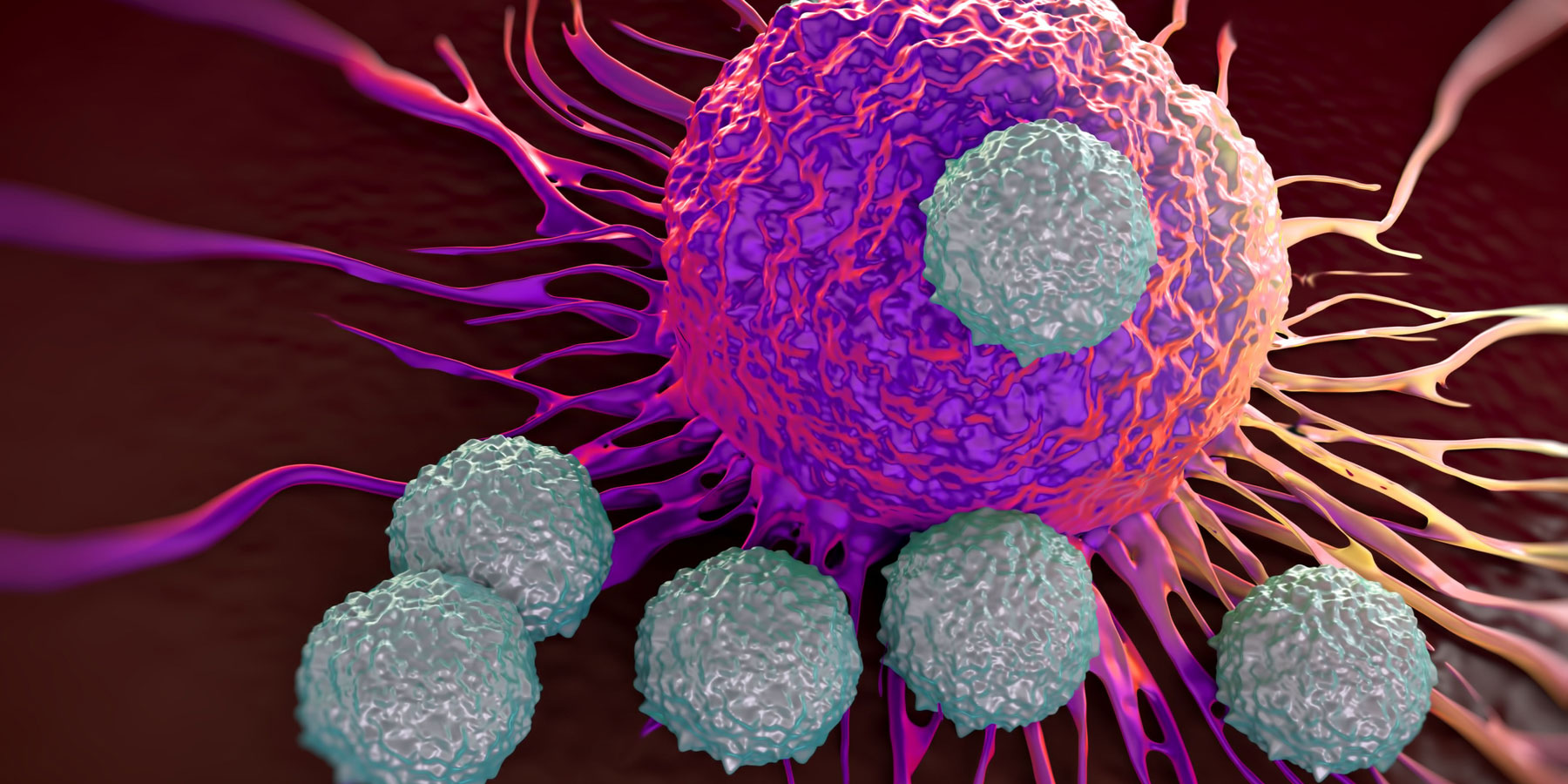 New Drug Leads to 30% Reduced Risk of Death for Bladder Cancer Patients