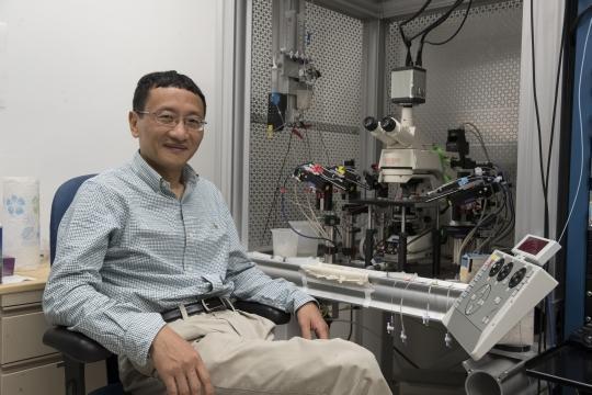 New Brain Sensor Offers Alzheimer's Answers
