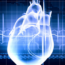 FDA Approves First Non-Surgical Heart Valve to Treat Congenital Heart Disease