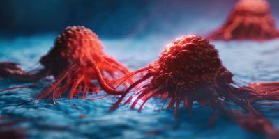 How Tumors Respond to Hypoxia