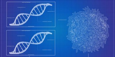 Monitoring How Tumors Respond to Treatment with ctDNA