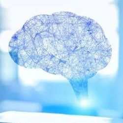 Researchers Call for Bias-Free Artificial Intelligence