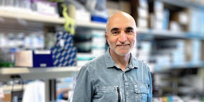 New Study May Help Explain Low Oxygen Levels in COVID-19 Patients