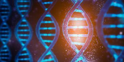 Grant to Improve Genetic Estimates of Disease Risk in Diverse Populations