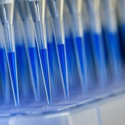New COVID-19 Mass Test is 100 Times More Sensitive than Rapid Antigen Tests