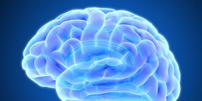Brain Functional Connectivity in Tourette Syndrome