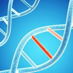 USC Researchers Discover Better Way to Identify DNA Variants