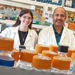 COVID-Causing Coronavirus Following Predictable Mutational Footsteps