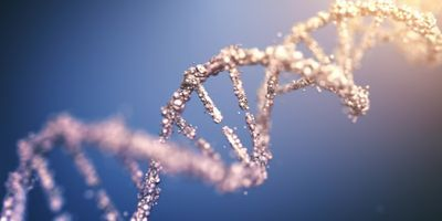 More Genetic Markers for Inherited Testicular Cancer Identified