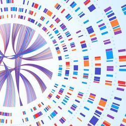 Solving Rare Disease Mysteries with Genomics