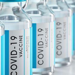 COVID-19 Vaccine Elicits Antibodies in 90 Percent Taking Immunosuppressants