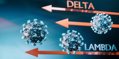 Scientists Model How Coronavirus Attaches Itself to Human Cells