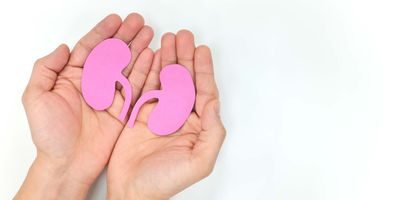 Progress in Xenotransplantation Opens Door to New Supply of Organs