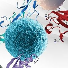 Beyond the Boundaries of LC-MS for Large Sample Proteomic Studies