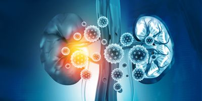 Urinary Biomarkers Predict Severe Kidney Injury in Patients with COVID-19