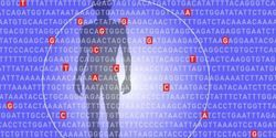 Researchers Predict Risk for Common Deadly Diseases from Millions of Genetic Variants