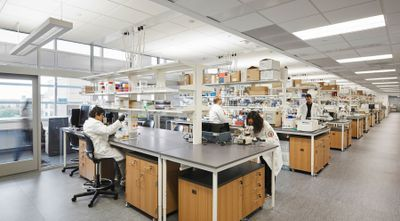 Emerging Practices in Clinical Laboratory Design