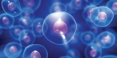Single-Cell Genomics in Disease Research and Diagnostics